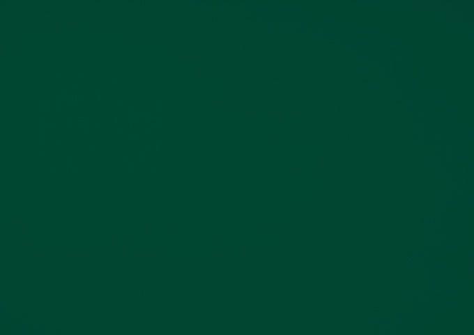 Toile de pergola foret vert dickson Orchestra Max 6687MAX