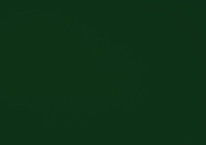 Toile au metre olive vert dickson orchestra 0853